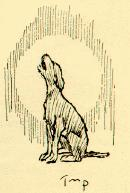 An illustration for the story A Dark Brown Dog by the author Stephen Crane